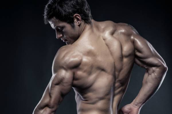 lean muscles and fitness