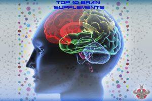 human brain top 10 supplements