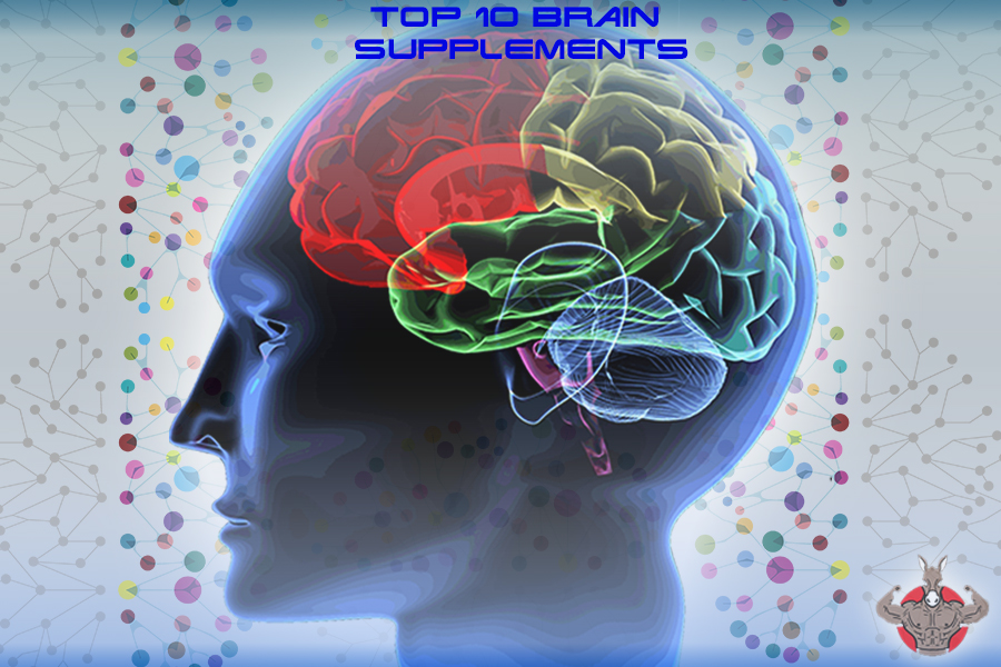 human brain top 10 supplements