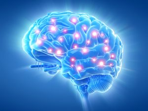 nootropics brain activity