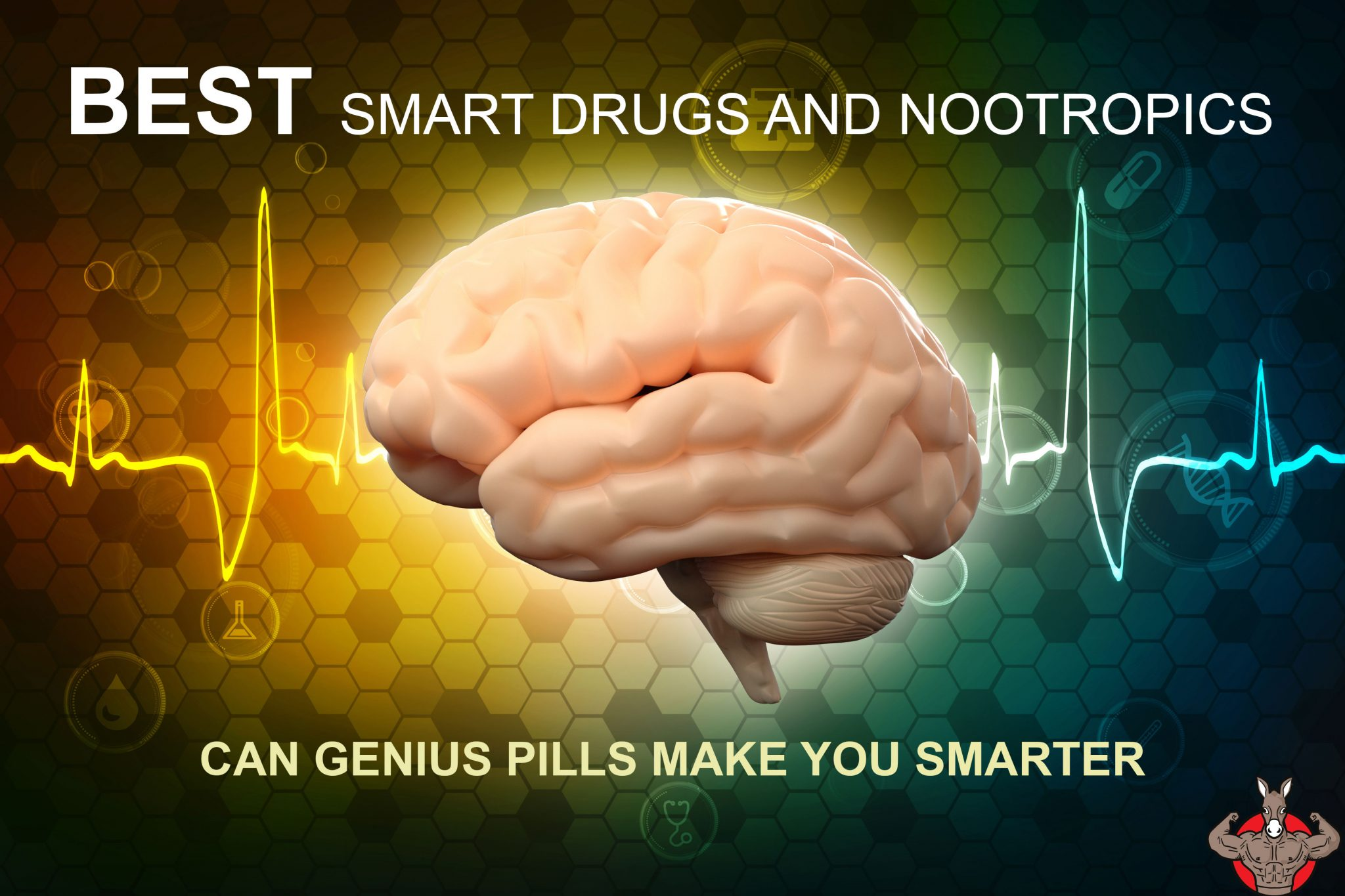 best smart drugs and nootropics